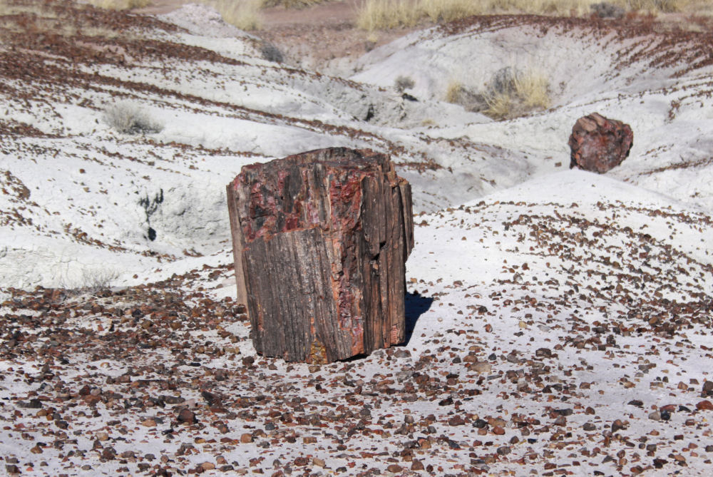 Crystalized minerals, Petrified Forest National Park, AZ