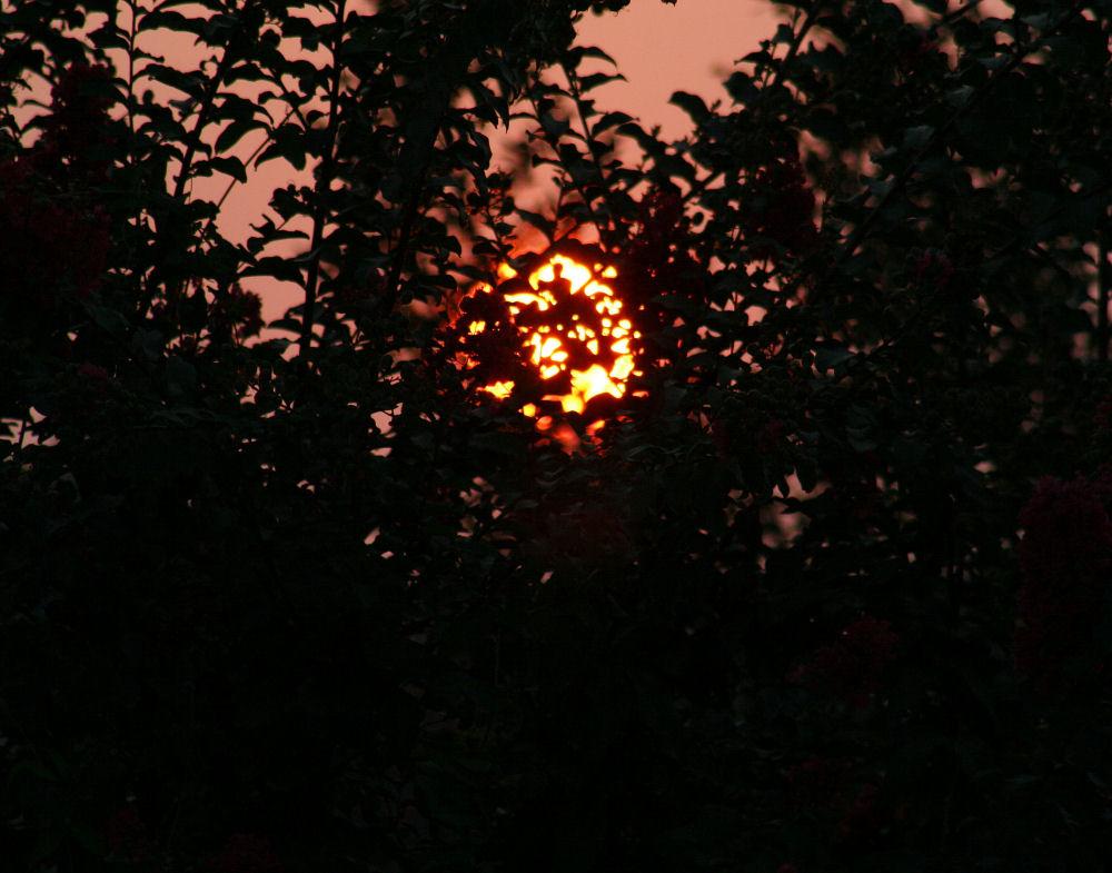 Sunrise August 31, 2007 Lewisville TX