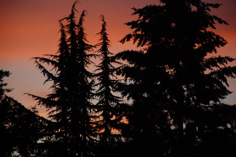 Hillsboro, Oregon sunset July 11th, 2014