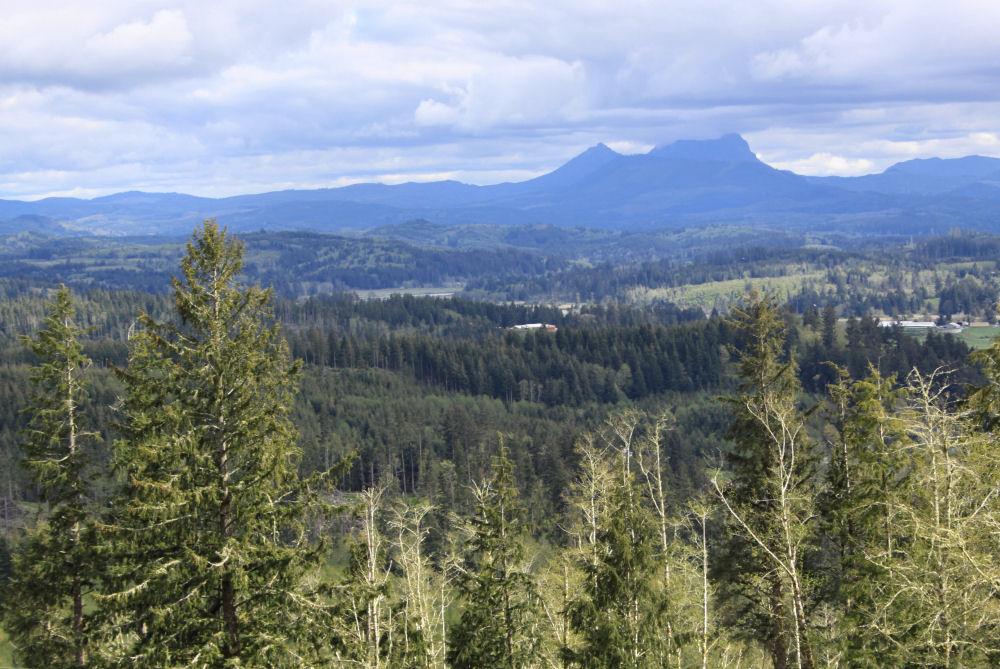 Saddle Mountain, Astoria, Oregon