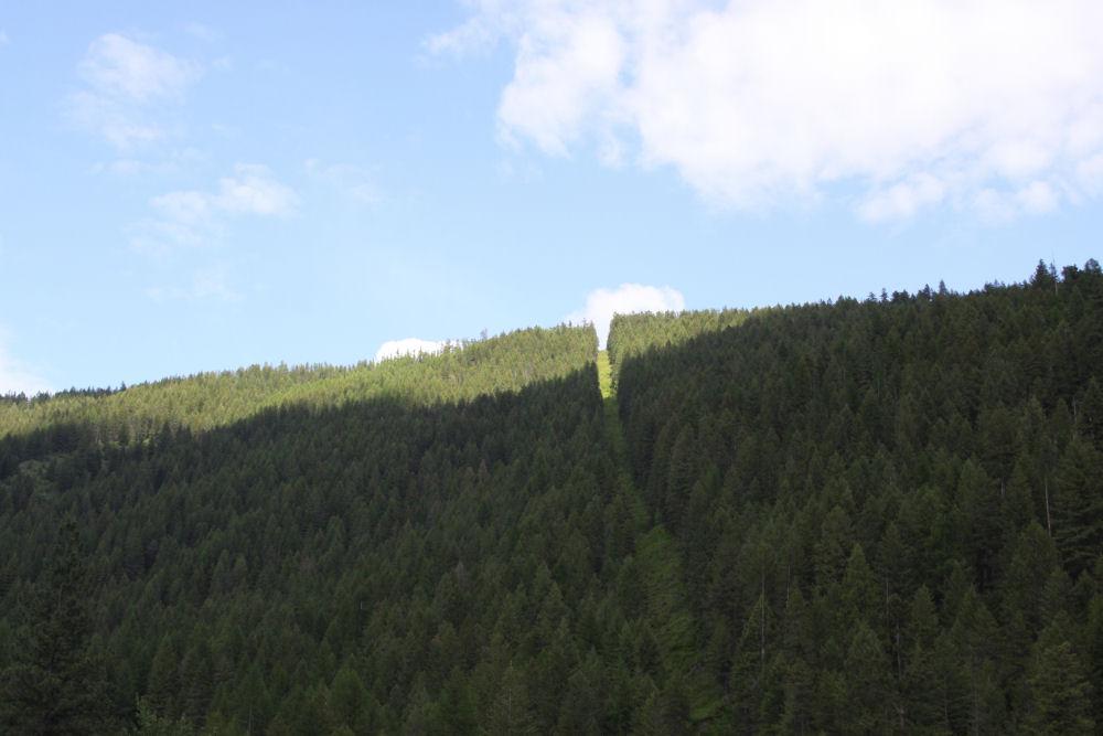 Hwy 93, BC - Alberta border in June, Canada