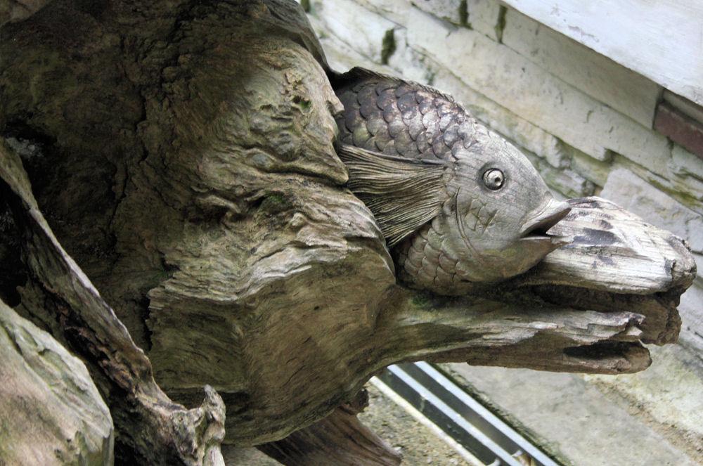 Botanical Gardens, driftwood carving