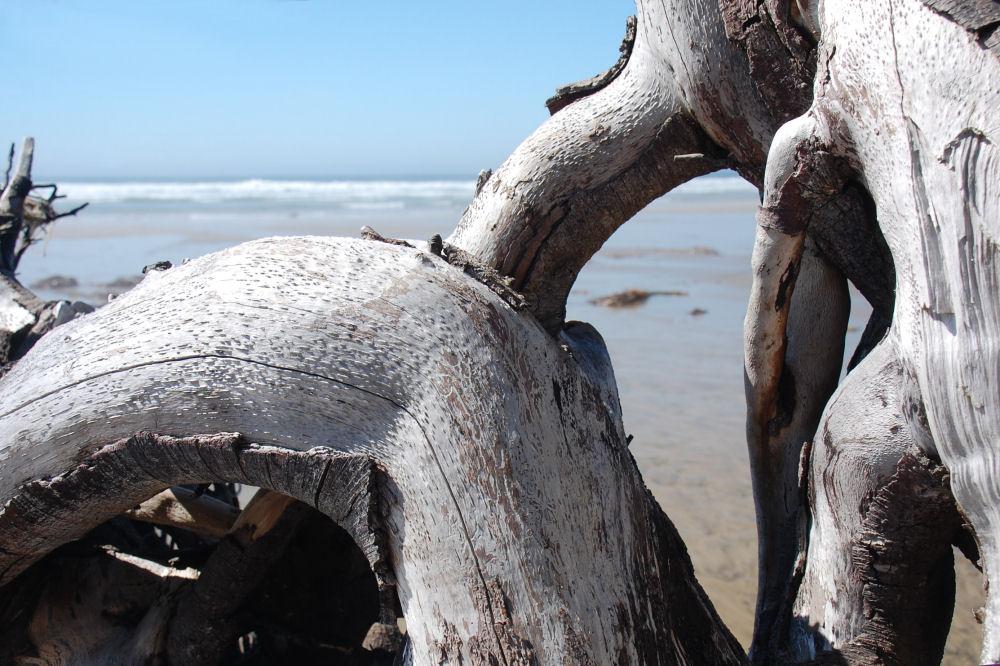 Oceanside beach, Oregon