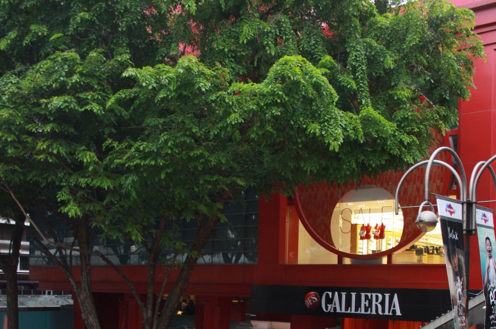 Galleria, Orchard Station