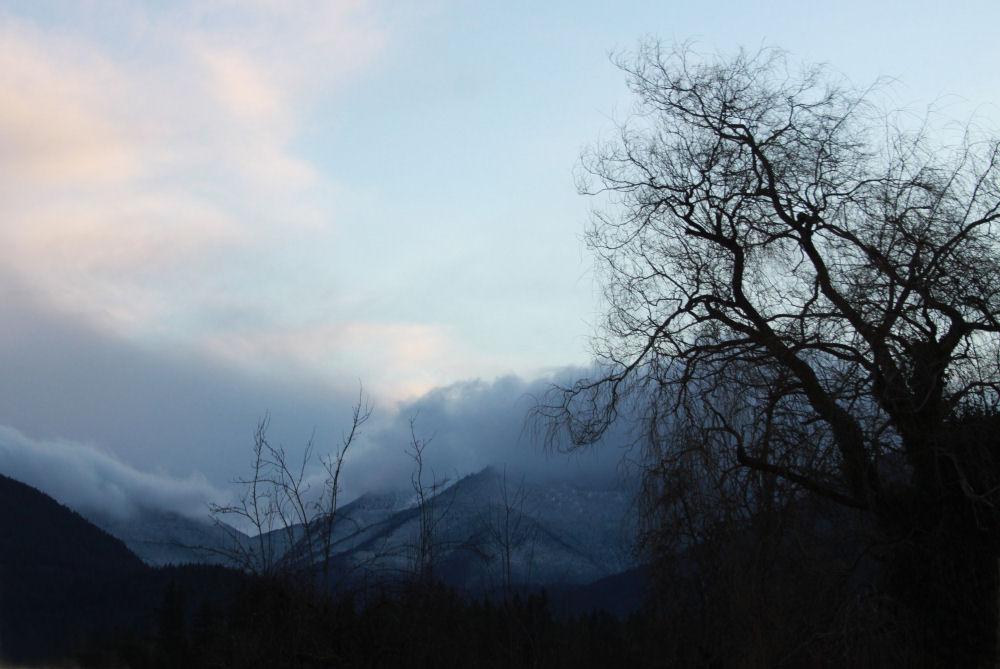 Hwy 101, Olymipic Mountain Range, Washington State