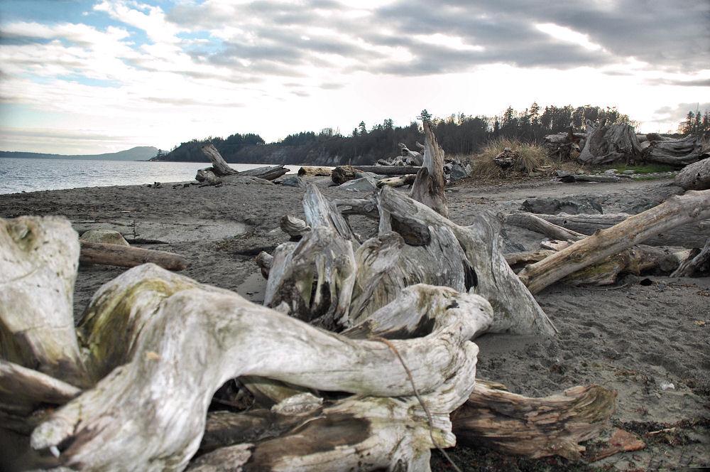 Island View Beach, BC
