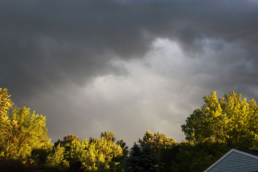 May 25th, 2012 after the storm, Hillsboro Oregon