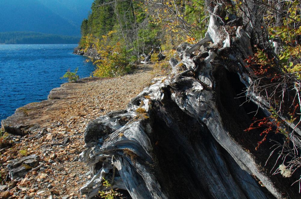 Nimkish Lake, BC