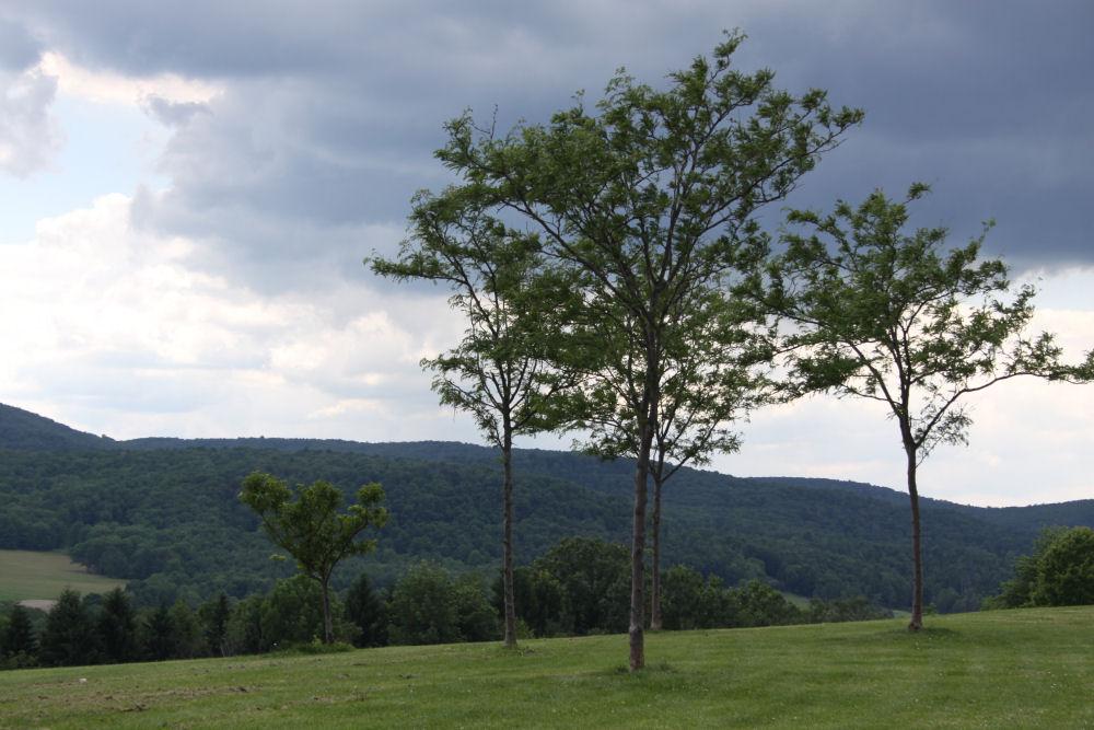 Near Homer, Pennsylvania