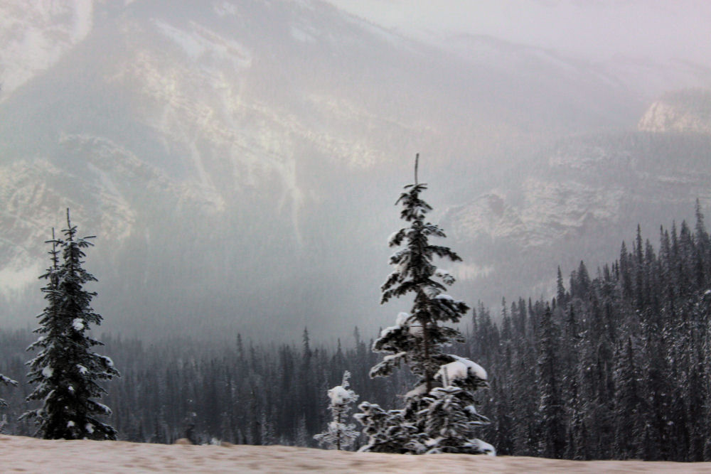 Rogers Pass, Rocky Mountains, BC