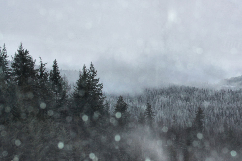 Near Salmon Arm, BC, December snow storm