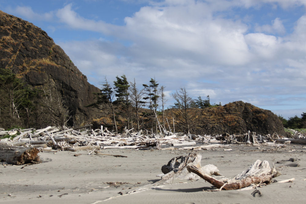 Long Island beach, Washington