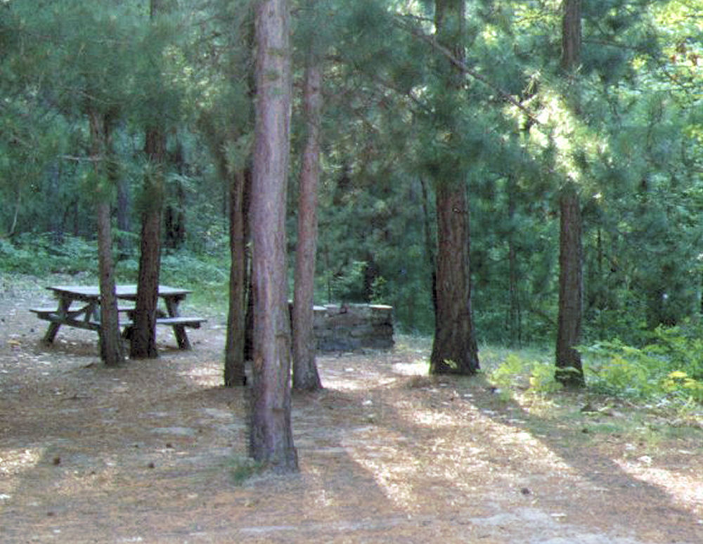 White Pine, Maine campsite