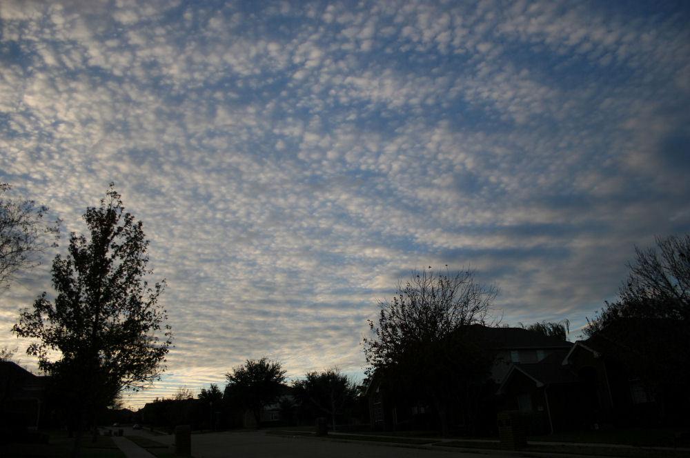 Mackeral sky, Dallas TX, December evening