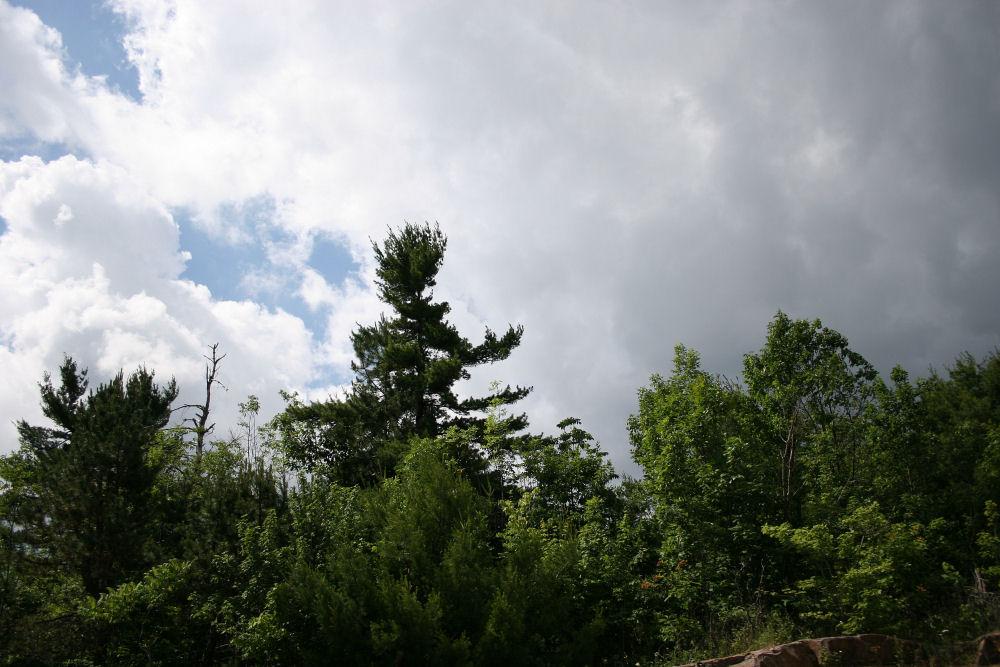 June 2007, Ontario landscape