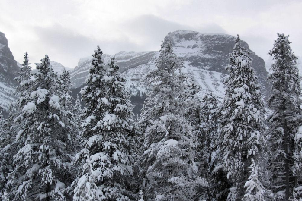 Yoho National Park, BC Canada